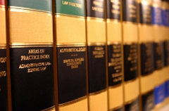demoisey law books
